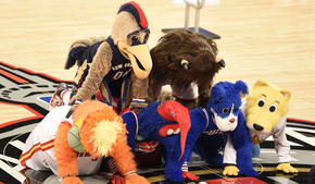 How to Become NBA Mascots?